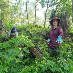GAP volunteers weeding
