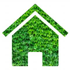 House outline made from green leaves