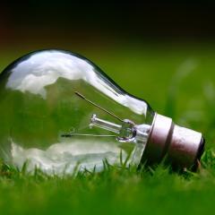 Glass light bulb on green grass