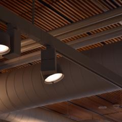 Spotlight lamps