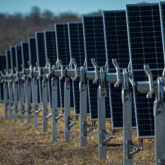 Warwick Solar panel rows