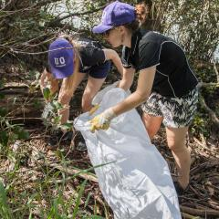 Volunteers picking up rubbish