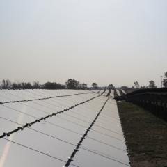 Solar panels at Gatton