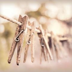 clothesline pegs