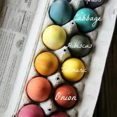 Eggs in a carton dyed with natural dyes